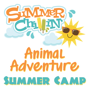 Animal Adventure Summer Camp